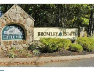 507 Bromley Estate, Pine Hill, NJ 08021 (MLS #6905729) :: The Dekanski Home Selling Team