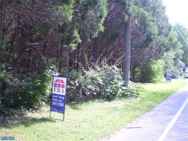 00 Fries Mill Road, Franklinville, NJ 08322 (MLS #6443801) :: The Dekanski Home Selling Team