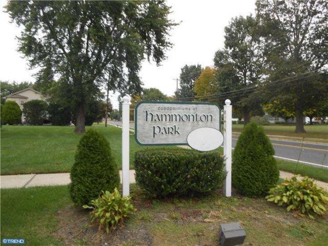 29U Rose Rita Terrace, Hammonton, NJ 08037 (MLS #6465531) :: The Dekanski Home Selling Team