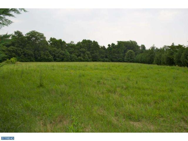0 Chestnut Grove Road, Dover, DE 19904 (MLS #6598914) :: RE/MAX Coast and Country