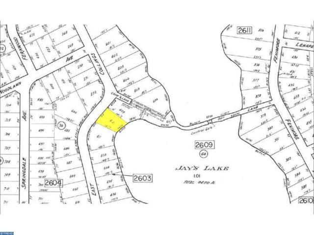 000 E Collings Drive, Williamstown, NJ 08094 (MLS #6839979) :: The Dekanski Home Selling Team