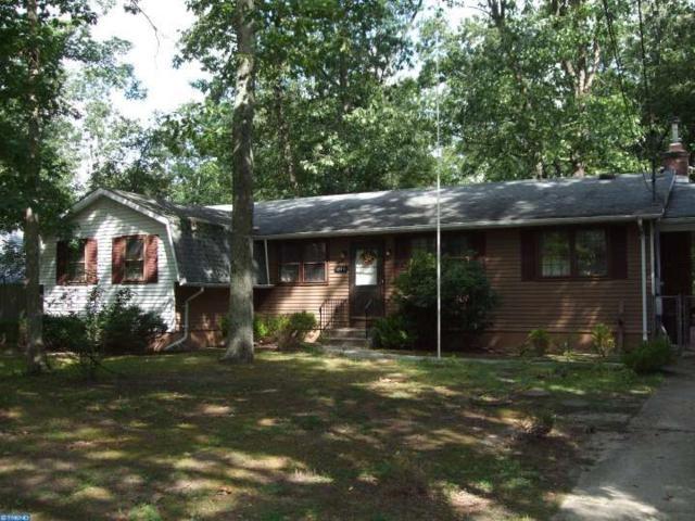 211 Spruce Trail, Chatsworth, NJ 08019 (MLS #6840220) :: The Dekanski Home Selling Team