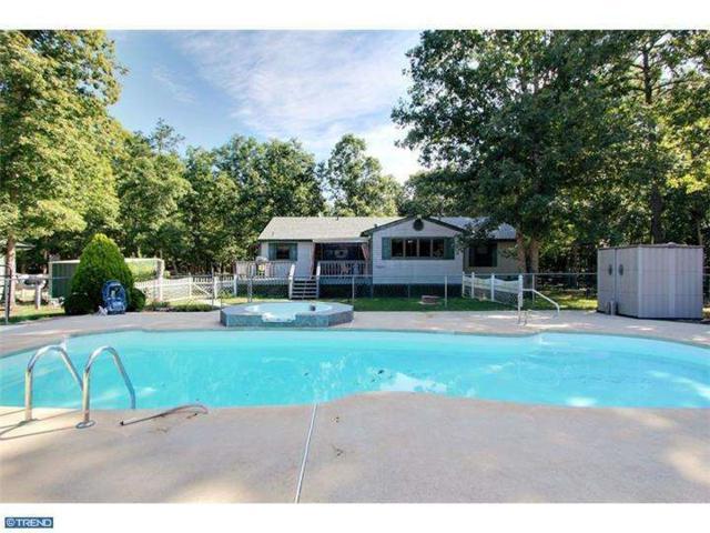 10 Cape May Avenue, Dorothy, NJ 08317 (MLS #6860983) :: The Dekanski Home Selling Team