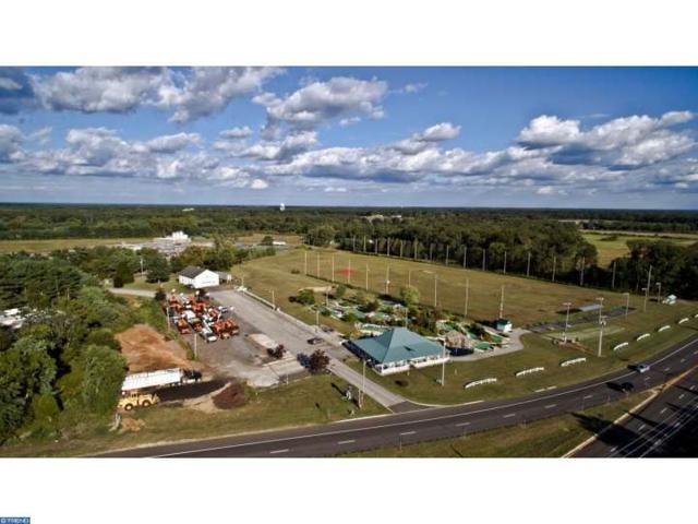 311 S Egg Harbor Road, Hammonton, NJ 08037 (MLS #6863236) :: The Dekanski Home Selling Team
