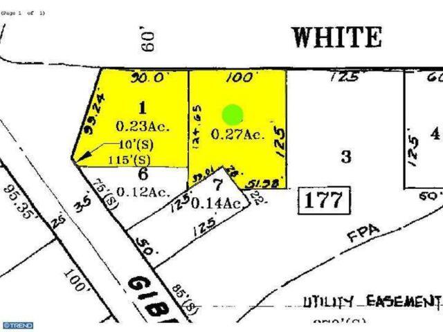 175-179 White Horse Road, Voorhees, NJ 08043 (MLS #6893539) :: The Dekanski Home Selling Team