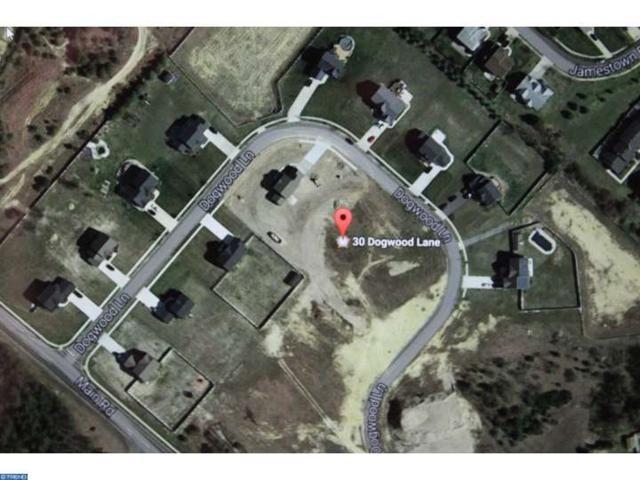 30 Dogwood Lane, Hammonton, NJ 08037 (MLS #6896448) :: The Dekanski Home Selling Team