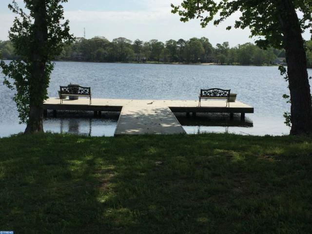 0 Palatine Road, Pittsgrove, NJ 08318 (MLS #6901123) :: The Dekanski Home Selling Team