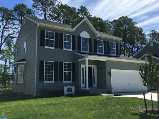 0 Galleria Drive, Mays Landing, NJ 08330 (MLS #6908377) :: The Dekanski Home Selling Team