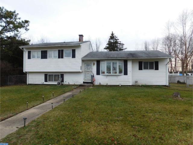 220 University Avenue, Pemberton, NJ 08068 (MLS #6913310) :: The Dekanski Home Selling Team
