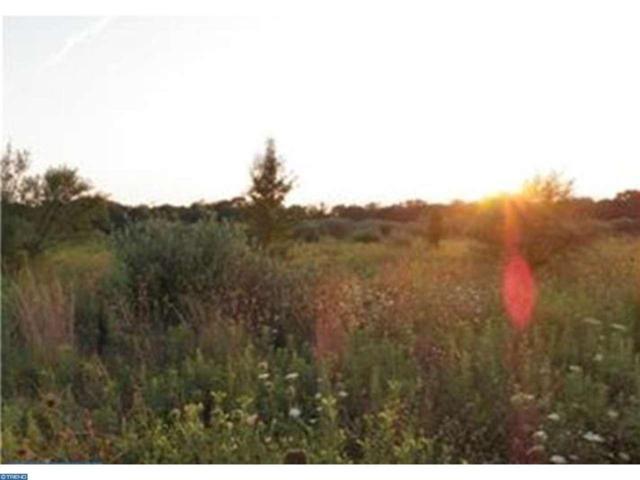 409 Winterberry Lane, Hammonton, NJ 08037 (MLS #6914437) :: The Dekanski Home Selling Team