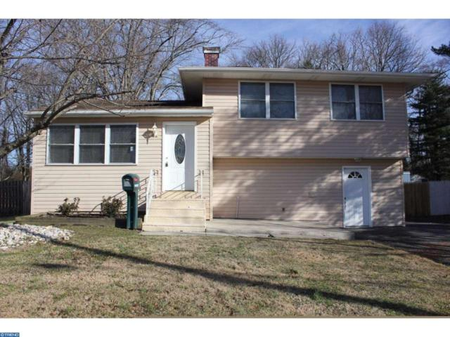 22 Timber Drive, Barrington, NJ 08007 (MLS #6919833) :: The Dekanski Home Selling Team