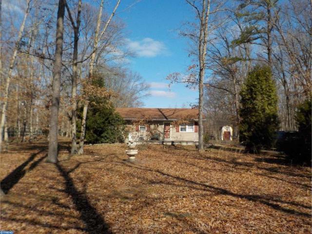 2235 Sheridan Avenue, Franklinville, NJ 08322 (MLS #6934188) :: The Dekanski Home Selling Team