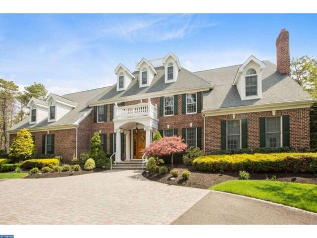 18 Cliff Swallow Drive, Medford, NJ 08055 (MLS #6935025) :: The Dekanski Home Selling Team