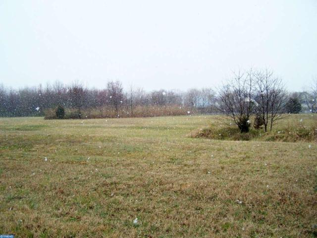 12500 Sussex Highway, Greenwood, DE 19950 (MLS #6943140) :: RE/MAX Coast and Country