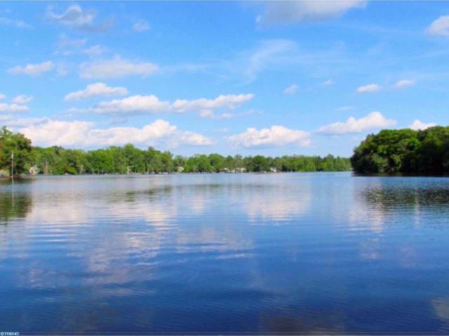 29 Silver Lake Drive, Clayton, NJ 08312 (MLS #6945125) :: The Dekanski Home Selling Team