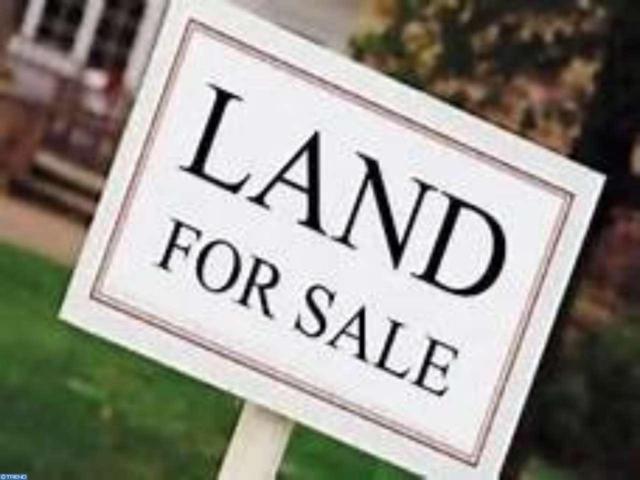 419 Irving Avenue, Bridgeton, NJ 08332 (MLS #6945584) :: The Dekanski Home Selling Team