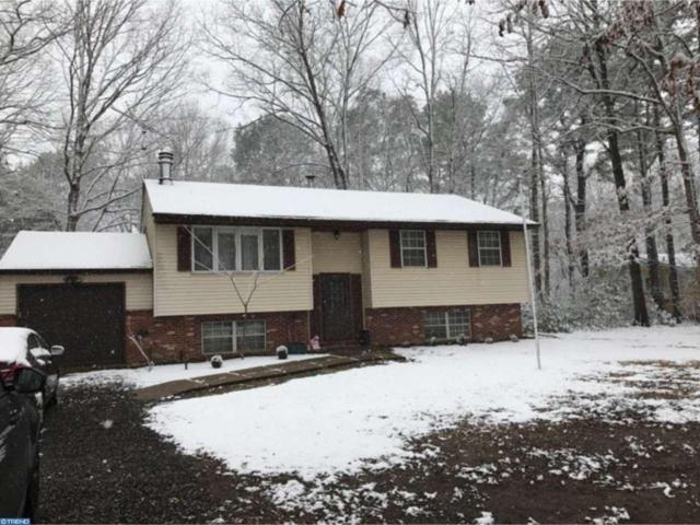 145 Lakeview Avenue, Franklinville, NJ 08322 (MLS #6946323) :: The Dekanski Home Selling Team