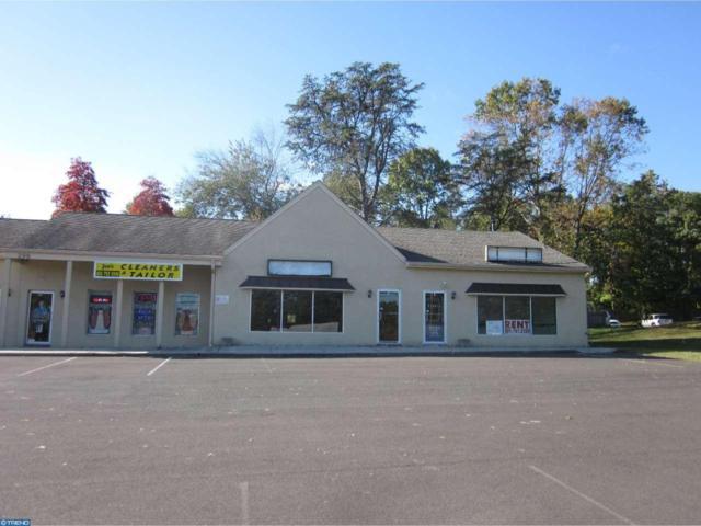 299 Jackson Road, Atco, NJ 08004 (MLS #6953826) :: The Dekanski Home Selling Team