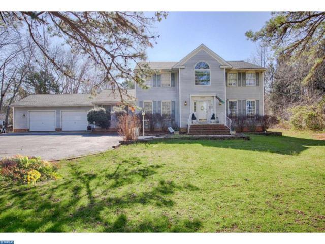 3096 Williamstown Road, Franklinville, NJ 08322 (MLS #6955787) :: The Dekanski Home Selling Team