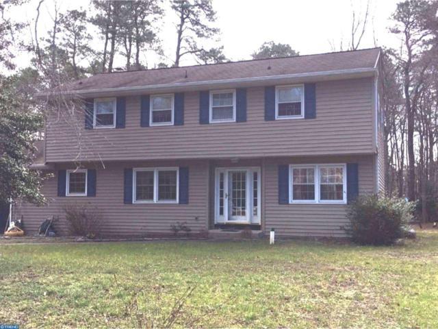 7 Pine Trail, Medford, NJ 08055 (MLS #6958419) :: The Dekanski Home Selling Team