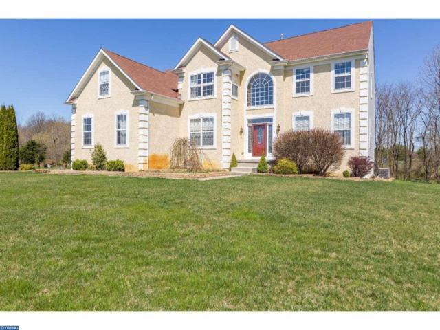 413 Mallard Lane, Monroeville, NJ 08343 (MLS #6965218) :: The Dekanski Home Selling Team