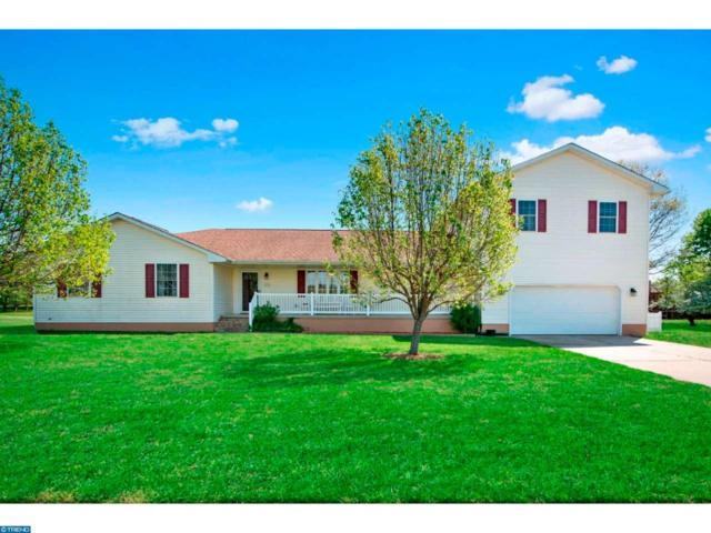 3 Matthews Lane, Pennsville, NJ 08070 (MLS #6967384) :: The Dekanski Home Selling Team