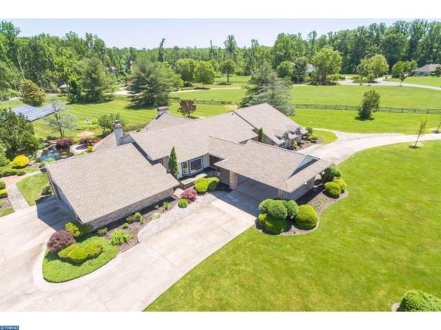 800 Lantern Way, Sewell, NJ 08080 (MLS #6967610) :: The Dekanski Home Selling Team