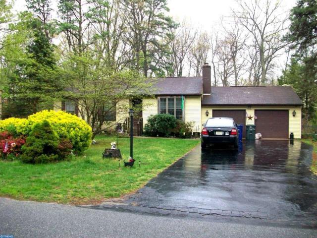 43 Sunnyhill Avenue, Franklinville, NJ 08322 (MLS #6968097) :: The Dekanski Home Selling Team