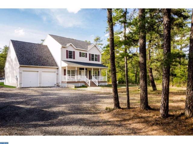 21 Savoy Boulevard, Chatsworth, NJ 08019 (MLS #6968279) :: The Dekanski Home Selling Team