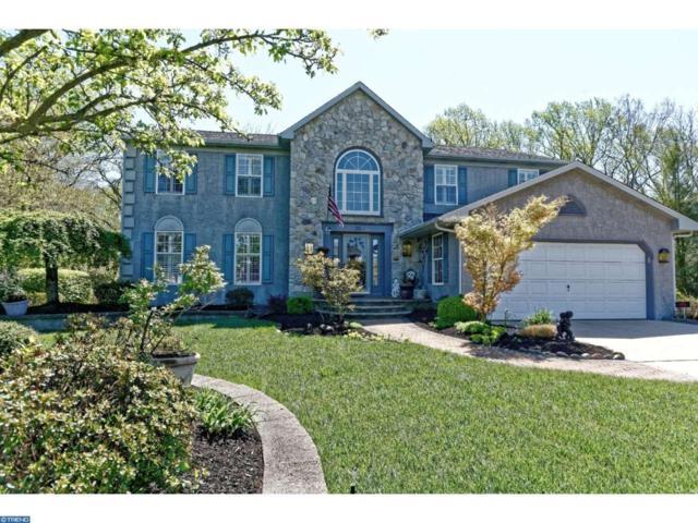 28 Aldridge Way, Sewell, NJ 08080 (MLS #6969232) :: The Dekanski Home Selling Team