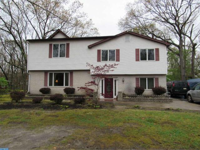 206 Ash Road, Marlton, NJ 08053 (MLS #6969628) :: The Dekanski Home Selling Team