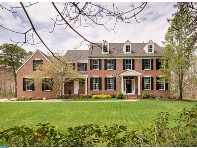 18 Catamount Drive, Medford, NJ 08055 (MLS #6973063) :: The Dekanski Home Selling Team