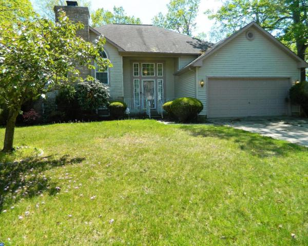163 Orlando Drive, Sicklerville, NJ 08081 (MLS #6974031) :: The Dekanski Home Selling Team