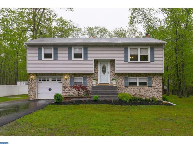 76 Summit Drive, Tabernacle, NJ 08088 (MLS #6977848) :: The Dekanski Home Selling Team