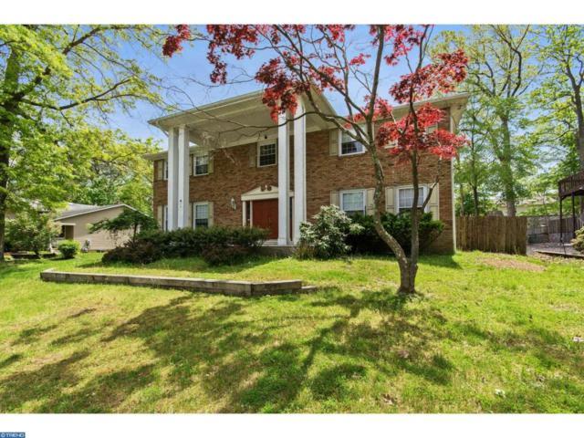 1014 Dell Drive, Cherry Hill, NJ 08003 (MLS #6978000) :: The Dekanski Home Selling Team
