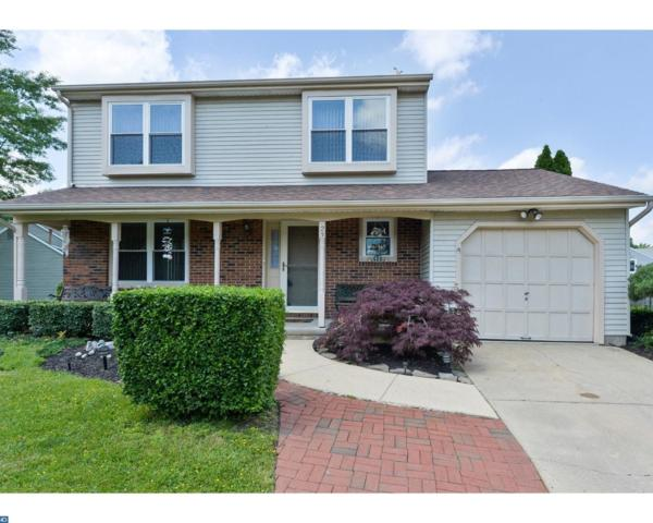 23 Apple Way, Marlton, NJ 08053 (MLS #6979907) :: The Dekanski Home Selling Team
