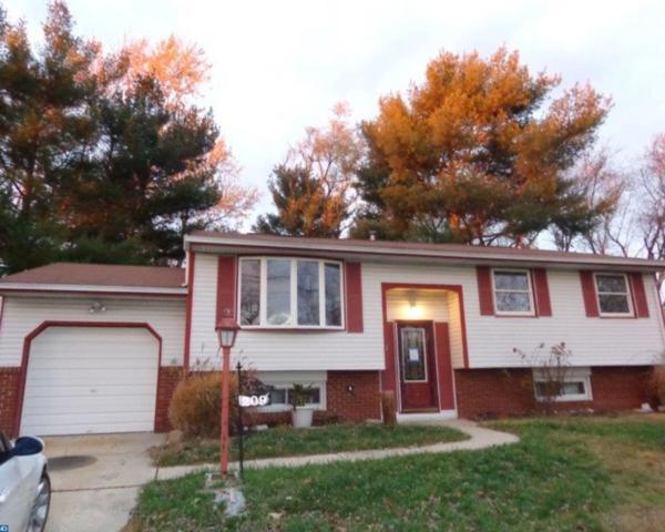 209 Princeton Place, Williamstown, NJ 08094 (MLS #6981386) :: The Dekanski Home Selling Team