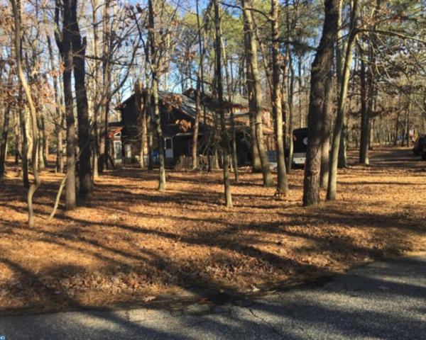 6 Red Oak Drive, Tabernacle, NJ 08088 (MLS #6983029) :: The Dekanski Home Selling Team