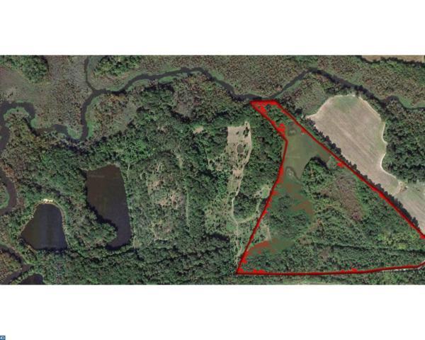 212 N Game Creek Road, Carneys Point, NJ 08069 (MLS #6983432) :: The Dekanski Home Selling Team