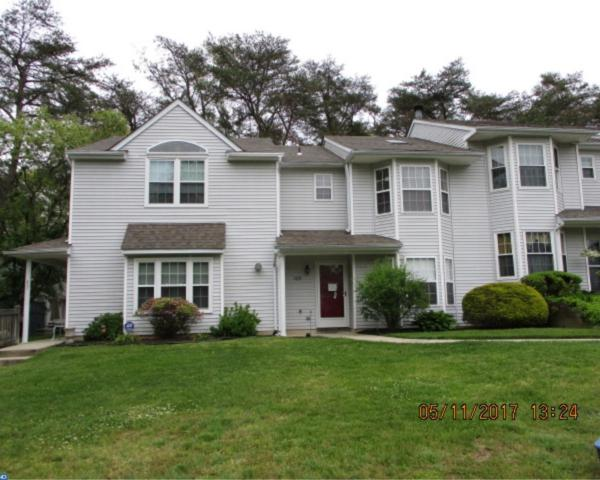109 Pendragon Way, Mantua, NJ 08051 (MLS #6984079) :: The Dekanski Home Selling Team