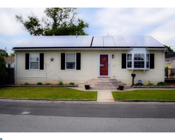 254 G Street, Carneys Point, NJ 08069 (MLS #6984866) :: The Dekanski Home Selling Team