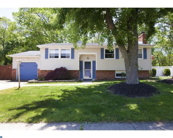 154 Princeton Place, Williamstown, NJ 08094 (MLS #6986090) :: The Dekanski Home Selling Team