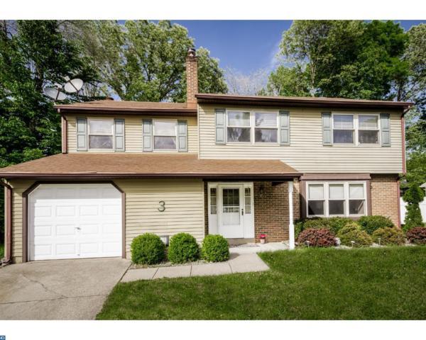 3 Leavering Mill Lane, Marlton, NJ 08053 (MLS #6986129) :: The Dekanski Home Selling Team