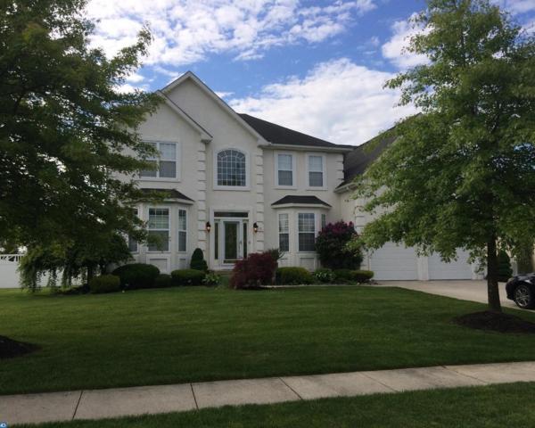 113 Golden Meadow Lane, Sicklerville, NJ 08081 (MLS #6987355) :: The Dekanski Home Selling Team