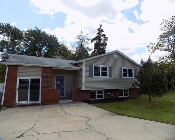 28 Mango Court, Sicklerville, NJ 08081 (MLS #6987759) :: The Dekanski Home Selling Team