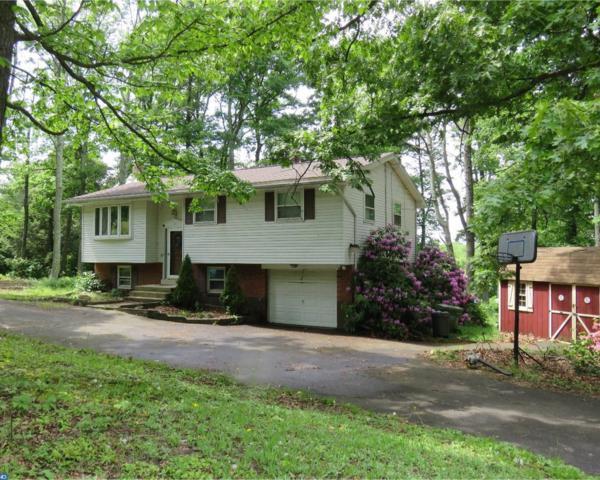 131 Hogan Drive, Auburn, PA 17922 (#6990790) :: Ramus Realty Group