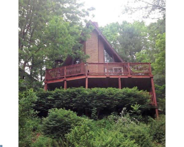 1496 Wynonah Drive, Auburn, PA 17922 (#6992334) :: Ramus Realty Group