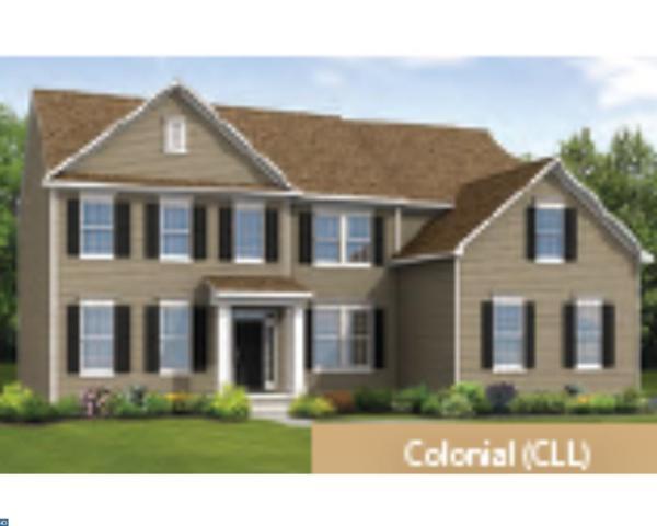 141 Roseum Way, Mullica Hill, NJ 08062 (MLS #6992462) :: The Dekanski Home Selling Team