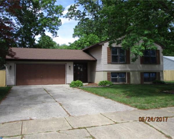 1771 Forest Drive, Williamstown, NJ 08094 (MLS #6993115) :: The Dekanski Home Selling Team