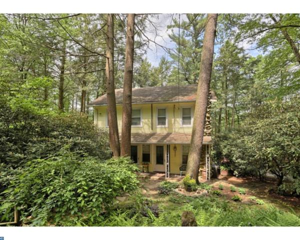 92 Shoreline Drive, Pine Grove, PA 17963 (#6994145) :: Ramus Realty Group